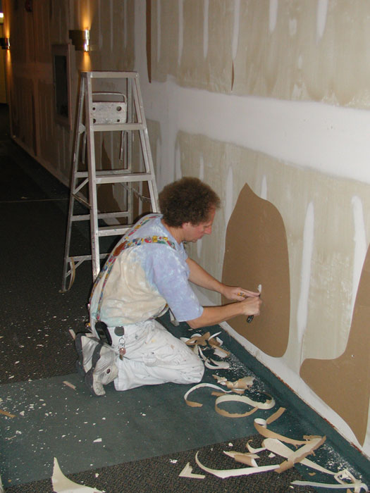 Wall Covering Service : Unforseen conditions what to expect when the wall